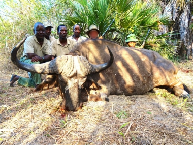 Cape Buffalo Hunting in Tanzania with Heritage Safaris