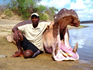 Hippopotamus Hunting in Tanzania with Heritage Safaris