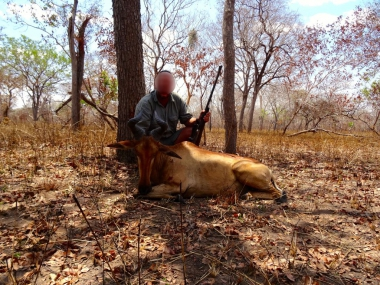 Lichtenstein Hartebeest Hunting in Tanzania with Heritage Safaris